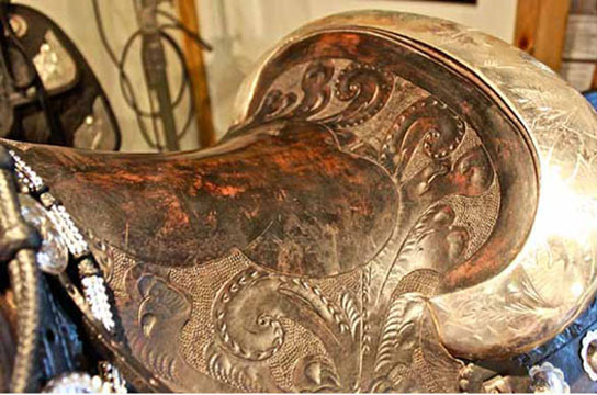 Paisley_Saddle_top_72_dpi